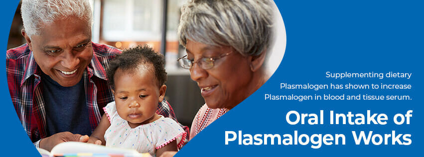 plasmalogen function